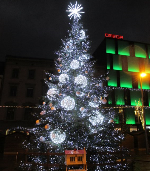 Brno_Christmas_tree_freedom_square.png