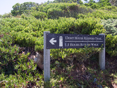 1406_Capepoint07.jpg