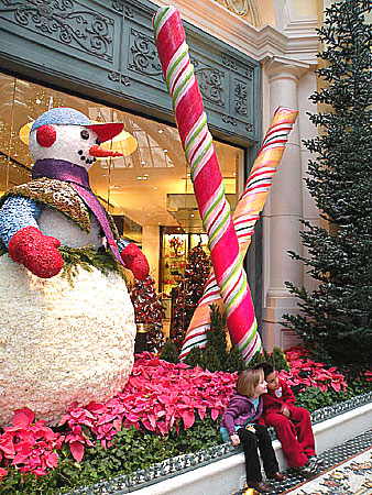Bellagiogarden_Dec12_7.jpg