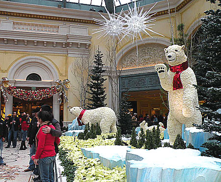Bellagiogarden_Dec12_8.jpg