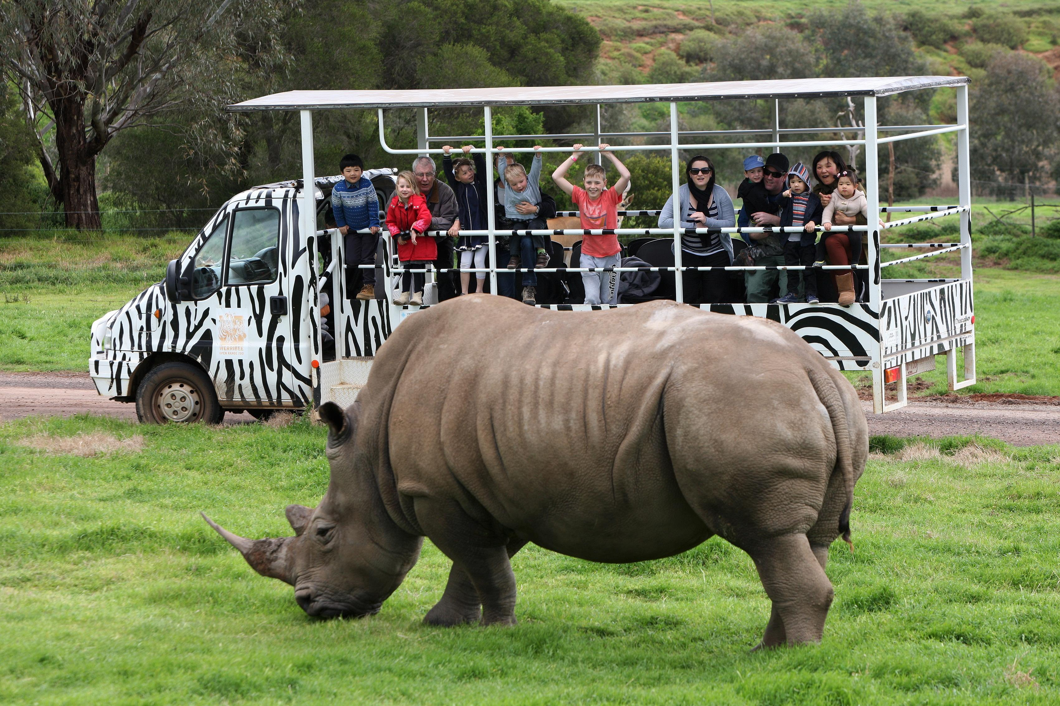 Family Off Road Safari - Werribee Open Range Zoo.jpg