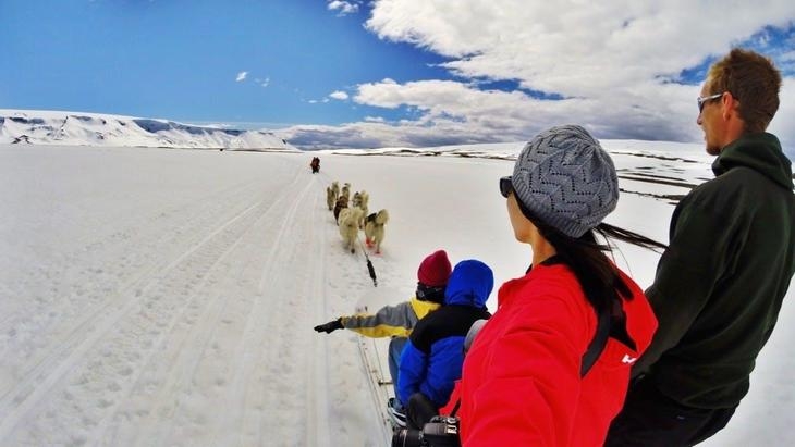travel-like-greenlanders-have-for-millennia-with-this-dog-sled-tour-2.jpg