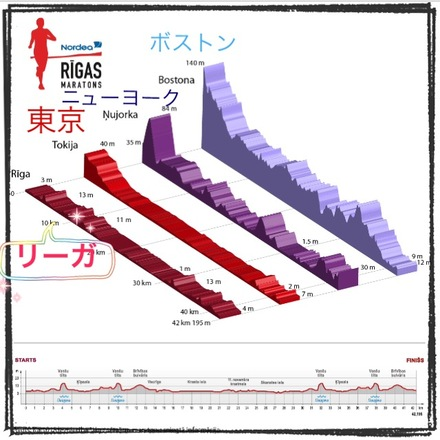 Full Marathon Course Height.JPG