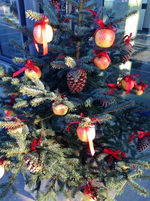 Christmas tree with apples(478x640).jpg