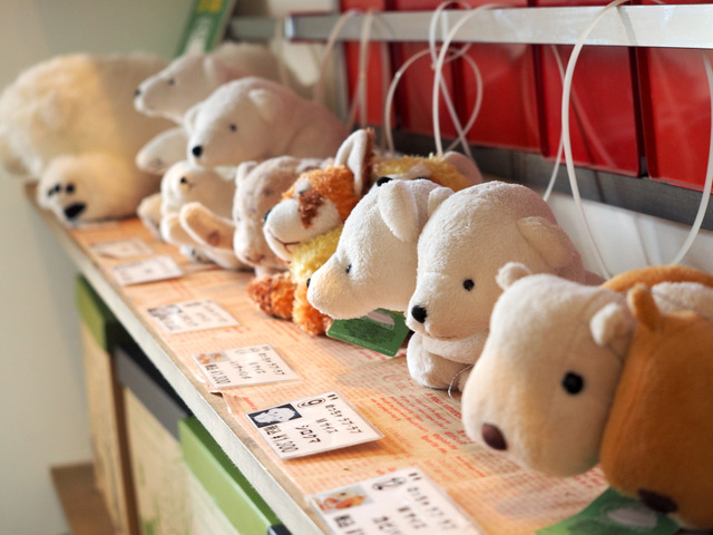 Cute Souvenirs at Nature Cafe Earth