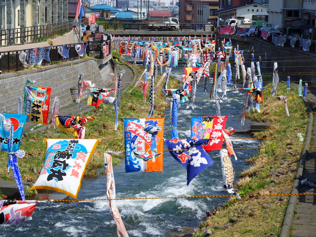 Flying Carp flying over the Katsunai River