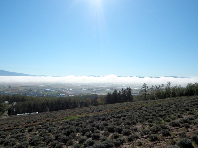 View of Furano Basin with Field of clouds