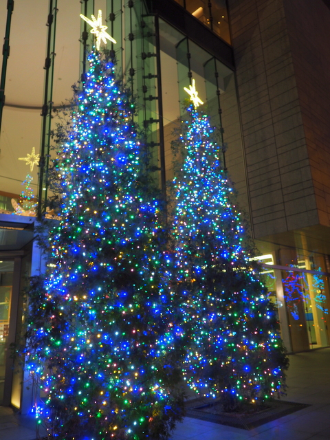 Christmas trees which stand at opposite side of Odori Park 3-chome