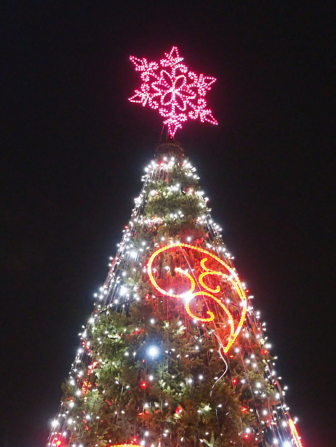 """LOVE Tree"" (Yeddo spruce) in Odori Park 1-chome"