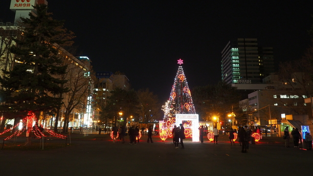 White Illumination in Odori Park 1-chome