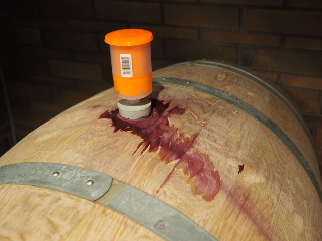 Very first wine put in a cask in NIKI Hills in October 2015