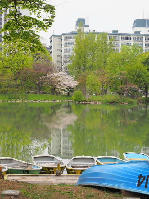 Iris Pond in Nakajima Park with boats