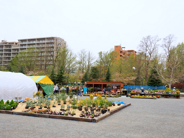 Annual event of Gardening Market in Freedom Squzre of Nakajima Park