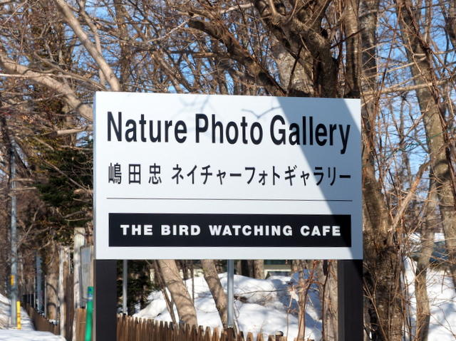 THE BIRD WATCHING CAFE