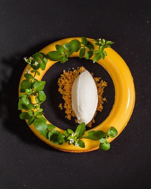 Bundt of passionfruit and coconut, wild watercress and buttermilk basil ice-cream.jpg
