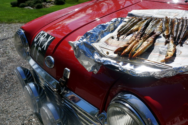 the car and smoked fish S.jpg