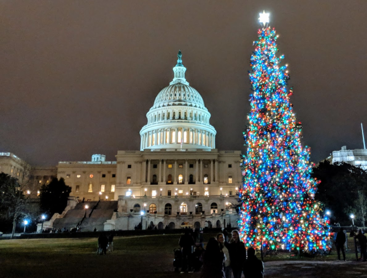 Capitol Chrismtas Tree.png