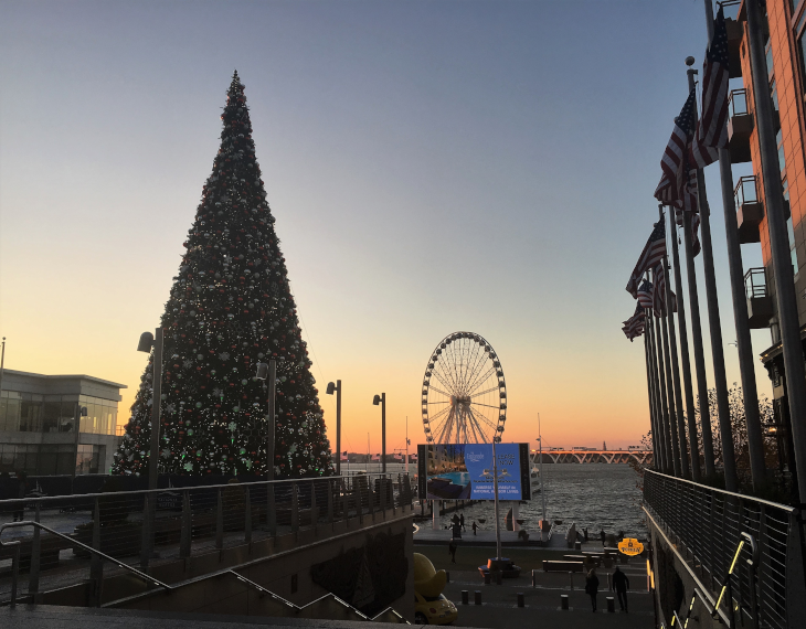 Christmas Tree in National Harbor .png