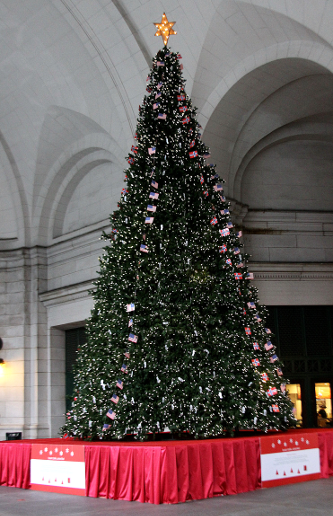 UnionStation Tree.png
